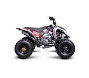 Puzey - Madix 125 Quad Bike Image